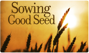 sowing good seed